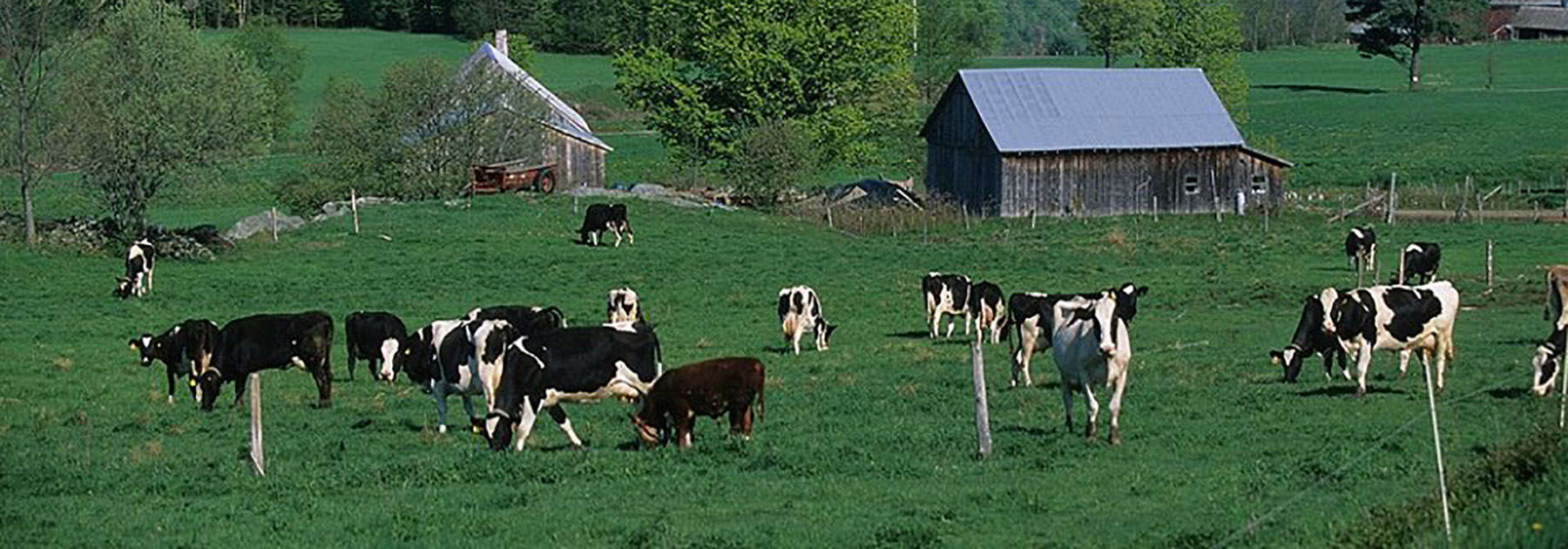 Vermont Farms for Sale | Farms in VT for Sale | CB Bill Beck