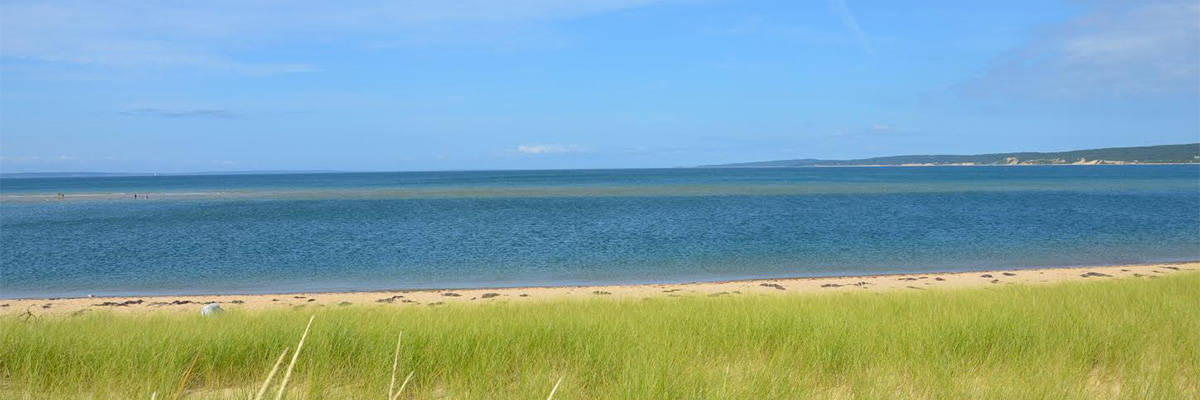 Tremendous Marthas Vineyard Real Estate Homes For Sale In Oak Bluffs Ma Interior Design Ideas Gentotryabchikinfo