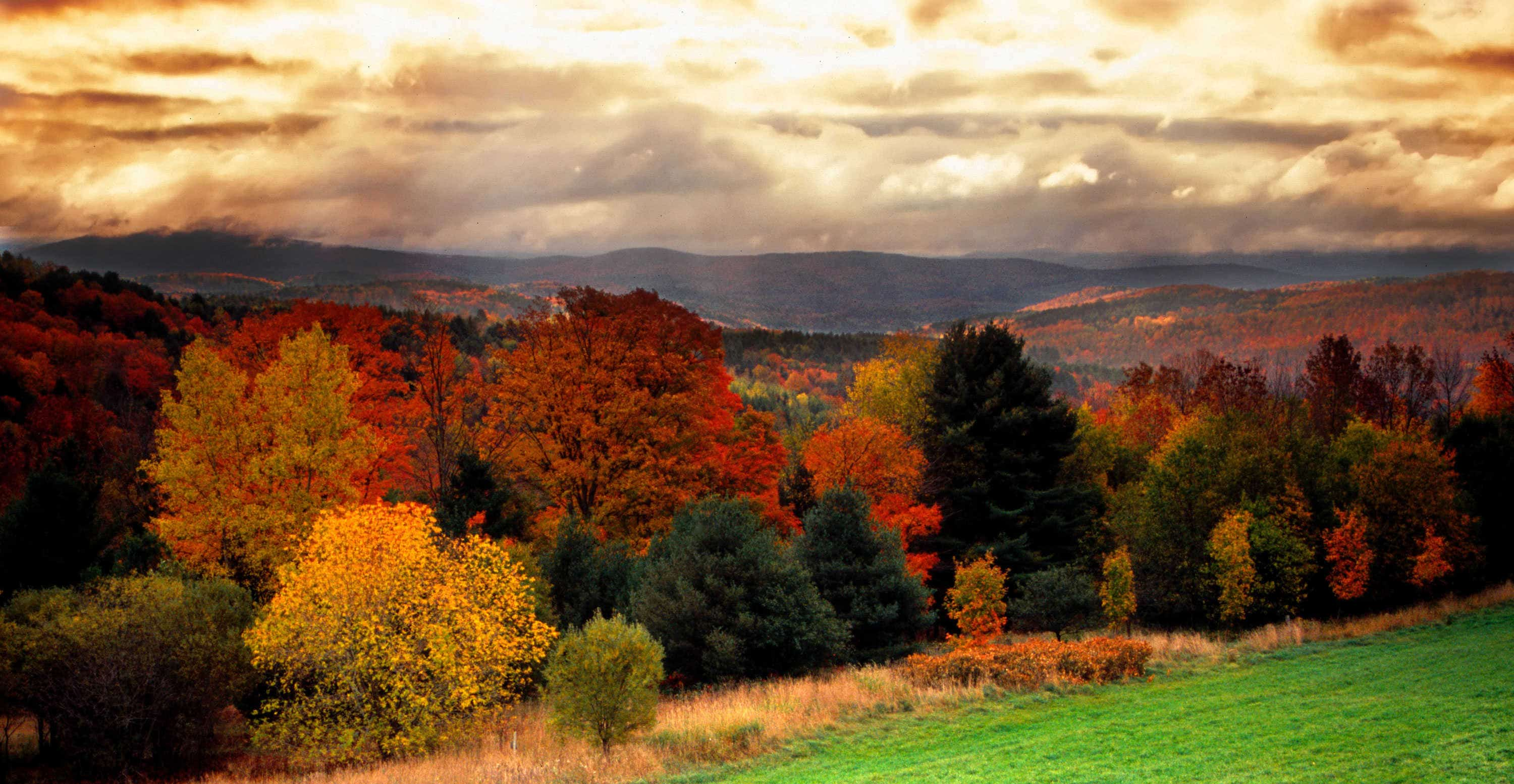 southern vermont real estate log homes for sale