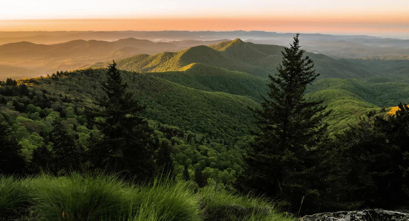 66 Elk Mountain Scenic, Asheville NC | MLS# 3453724 - Greybeard Realty