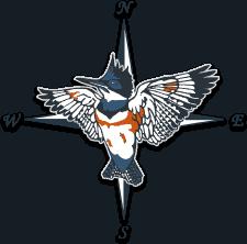 Kingfisher company logo